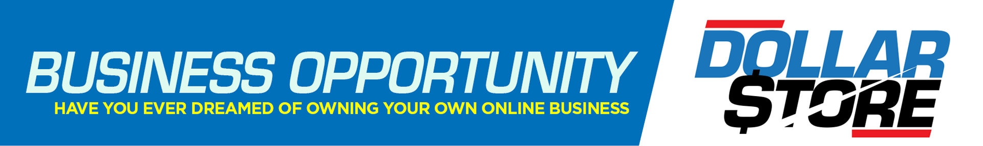 DollarStore Business Opportunity
